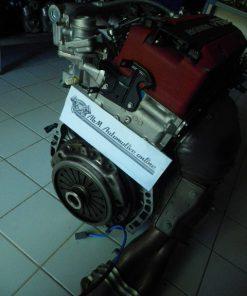 IMGP2584B201