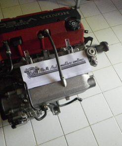 IMGP2585C201