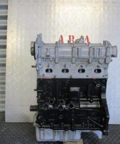 IMG 1335