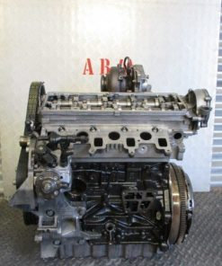 IMG 1384