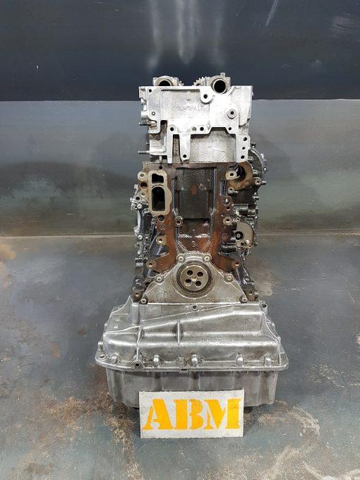 OM651955 3